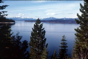 Almanor fishing adventures with guide doug neal 530 258 6732 for Lake almanor fishing report